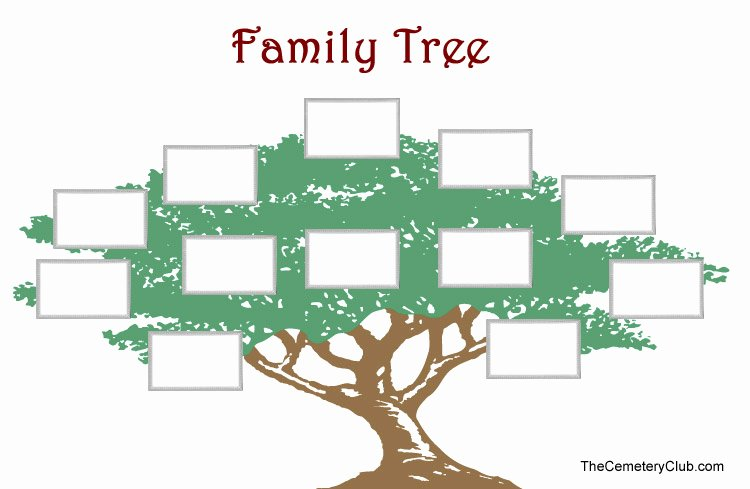 6 Best Of Free Printable Our Family Tree