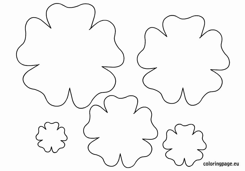 6 Best Of Paper Flower Template Printable