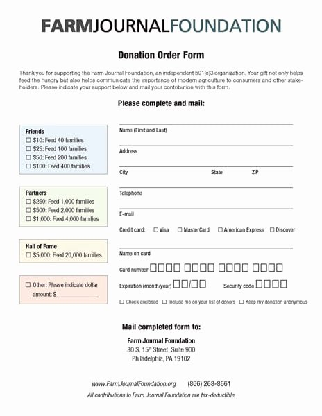 6 Charitable Donation form Templates formats Examples