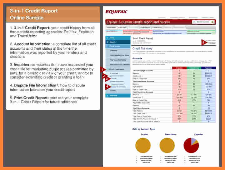 6 Equifax Wrong Information On Credit Report