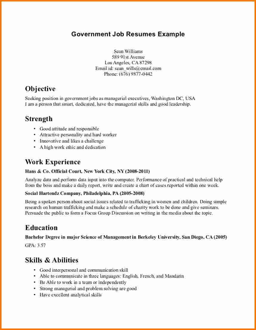 6 Federal Job Resume Sample