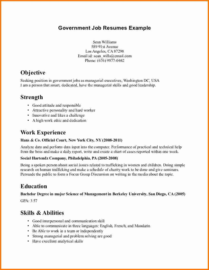 6 Federal Job Resume Sample