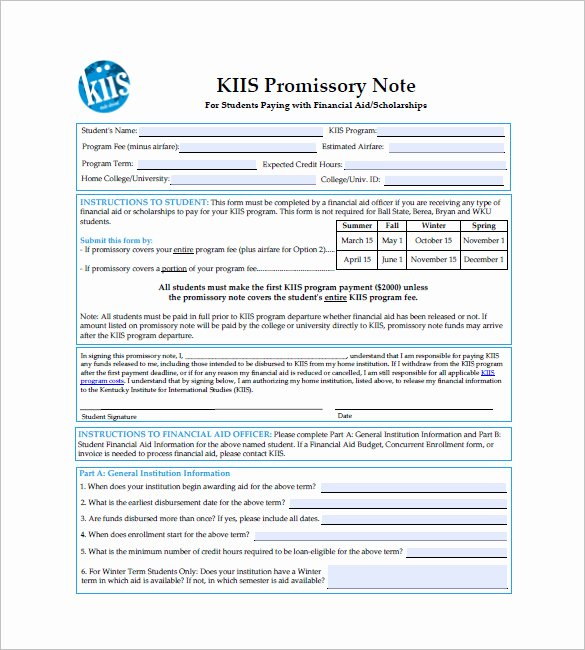6 International Promissory Note Templates Free Sample