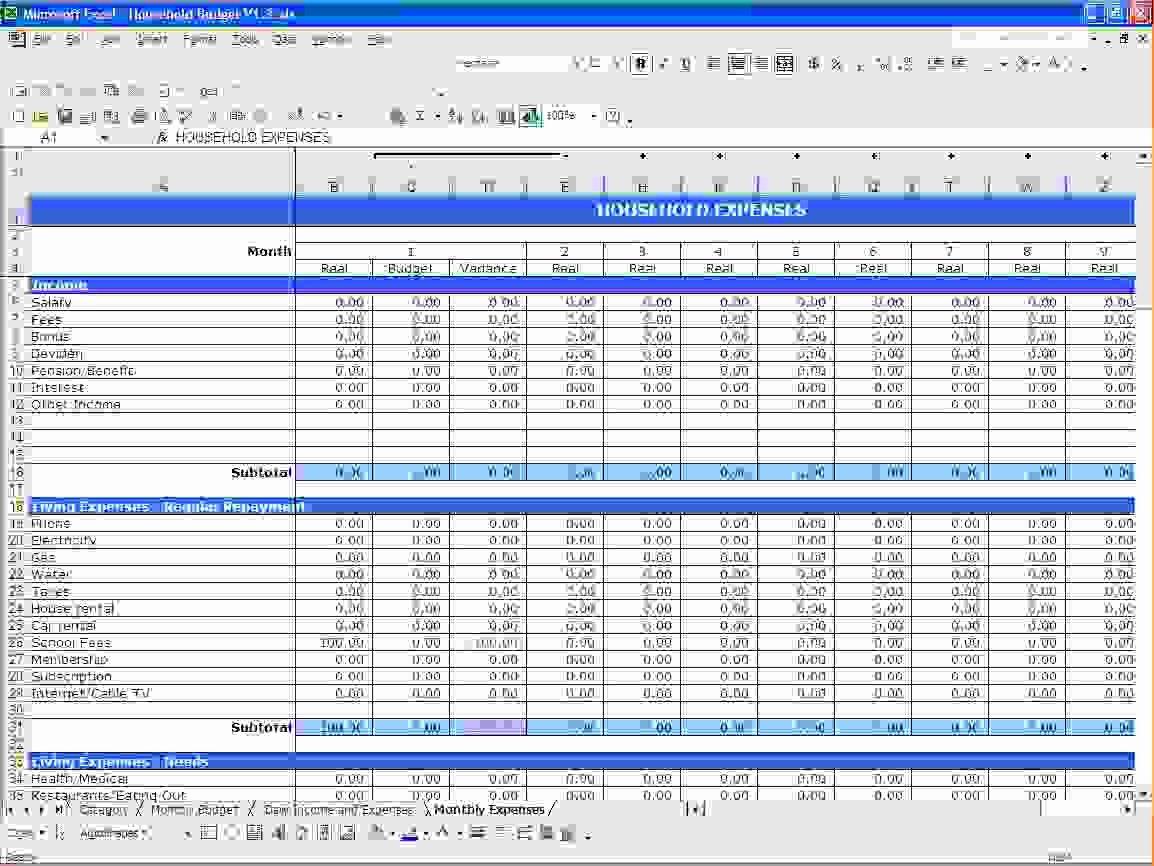 6 Microsoft Excel Bud Template