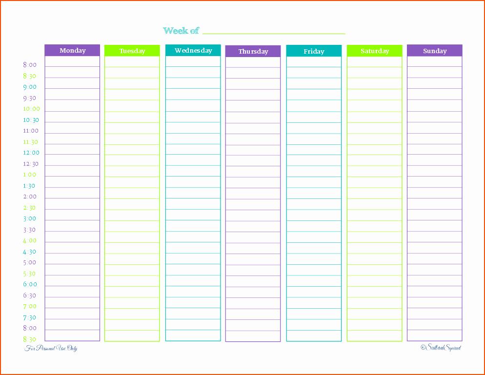 6 Weekly Printable Planner Bookletemplate