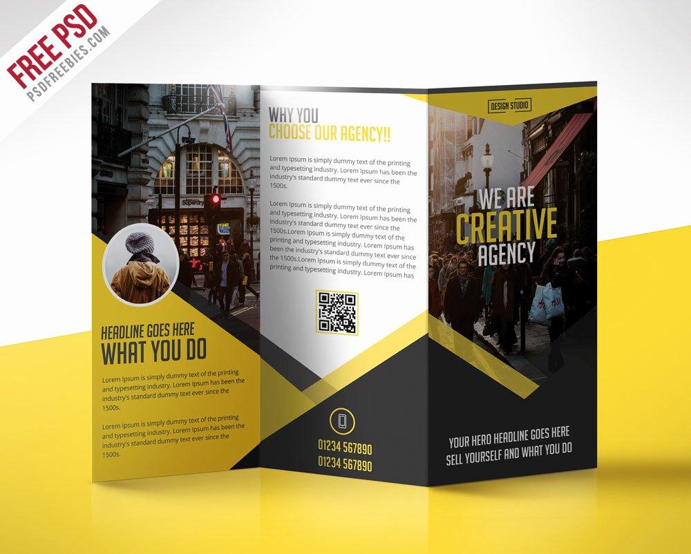 69 Premium and Free Psd Tri Fold & Bi Fold Brochures
