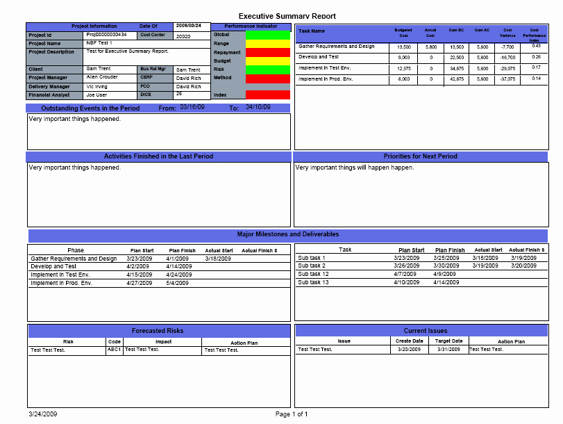 7 Best Of Project Summary Report Template E
