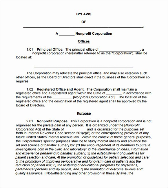 7 bylaws Templates
