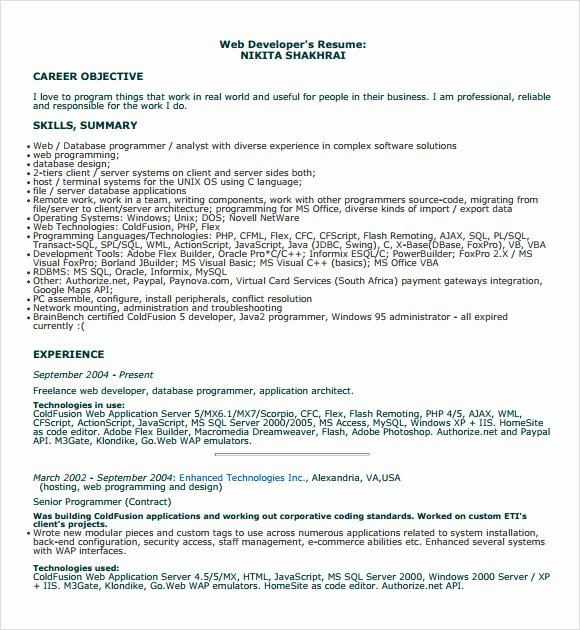 7 Printable Sample Programmer Resume Templates