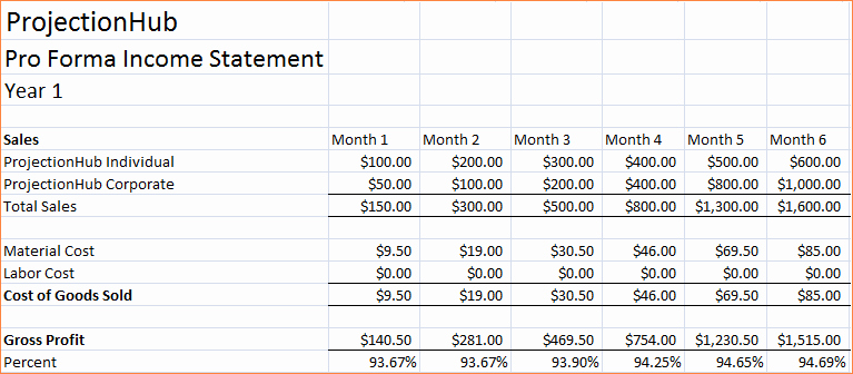 7 Pro forma Financial Statements Template