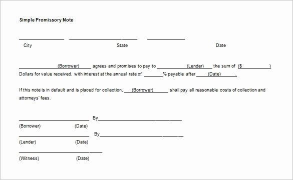 7 Promissory Note Templates Word Excel Pdf Templates
