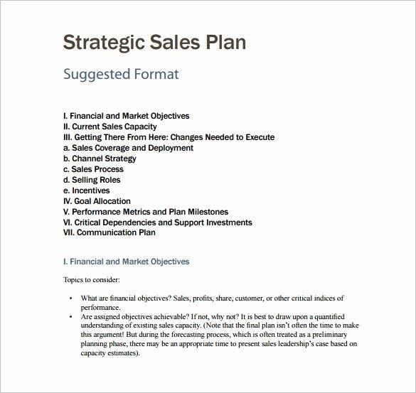 7 Sales Plan Template Pdf Doc