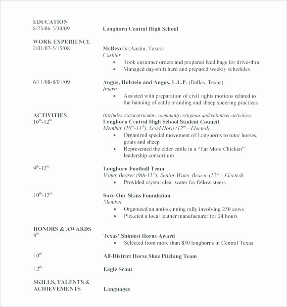 7 Sample High School Resume Templates