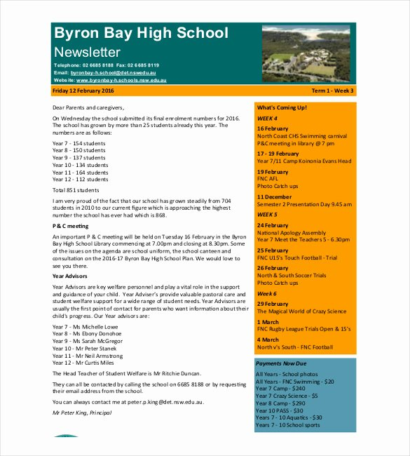 7 School Newsletter Templates Free Sample Example