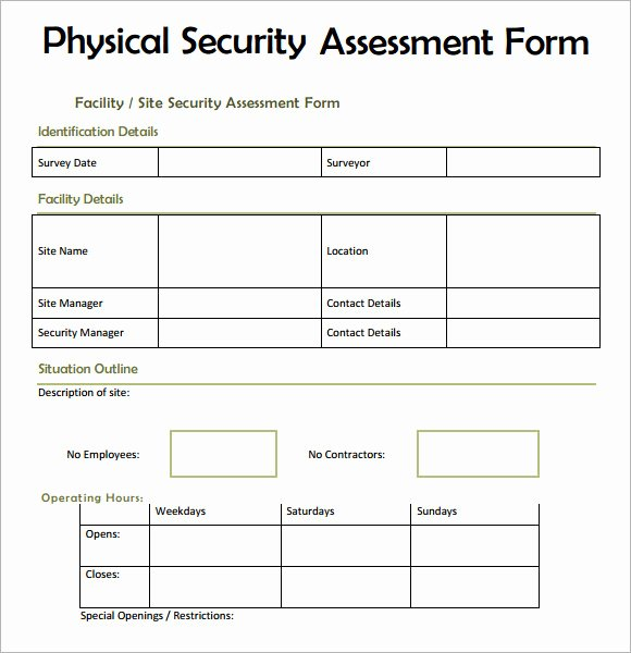 7 Security assessment Samples Examples Templates