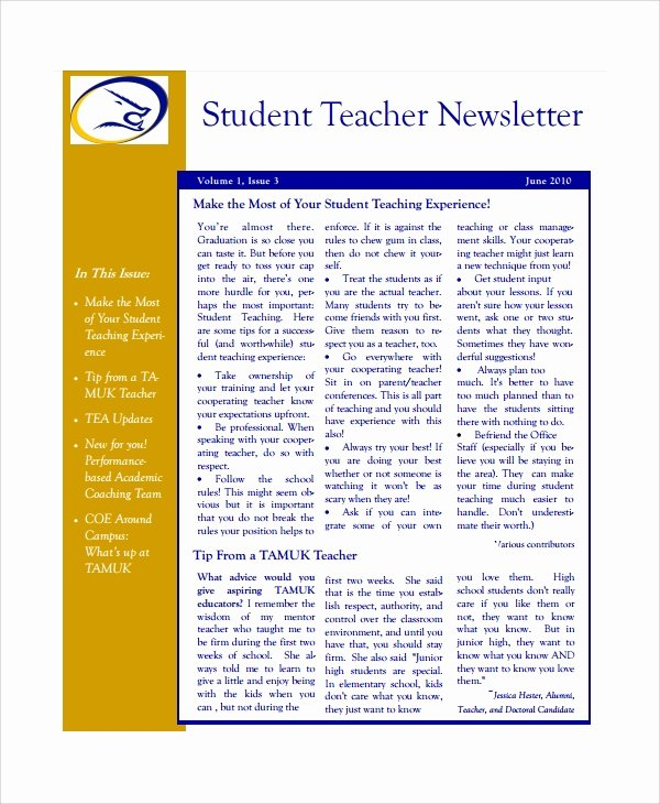 7 Teacher Newsletter Templates