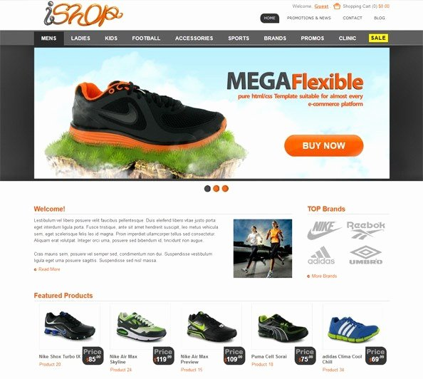 70 Best Free HTML E Merce Website Templates 2017
