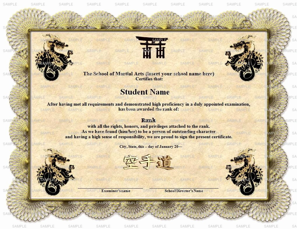 8 Best Of Martial Arts Certificate Templates