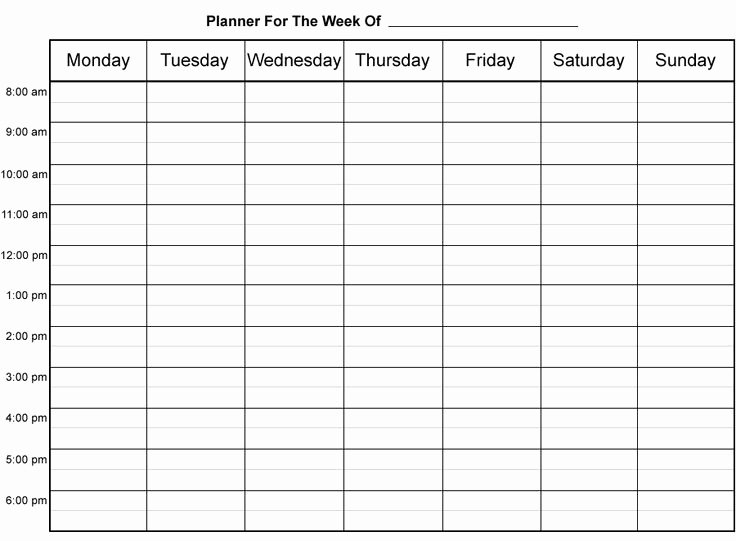 8 Best Of Printable Daily Appointment Sheets Free