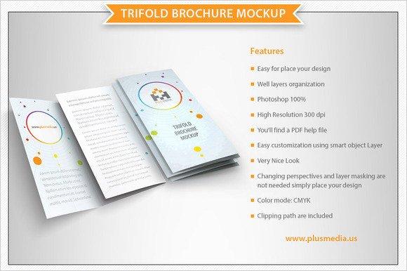 8 Blank Brochures