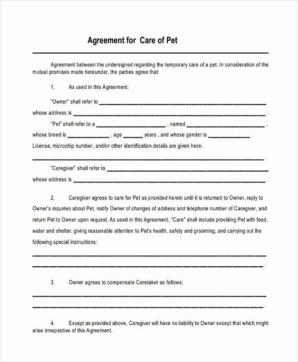 8 Custody Agreement form Samples Free Sample Example
