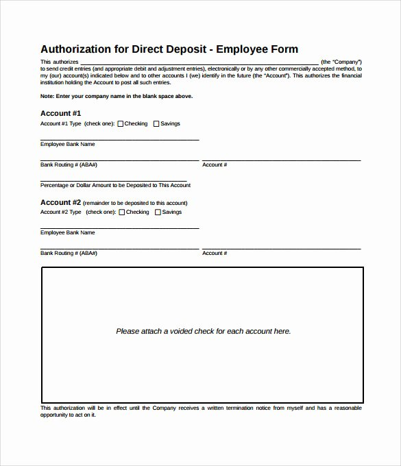8 Direct Deposit Authorization form Examples Download for