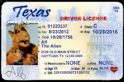 8 Drivers License Template Psd California Drivers