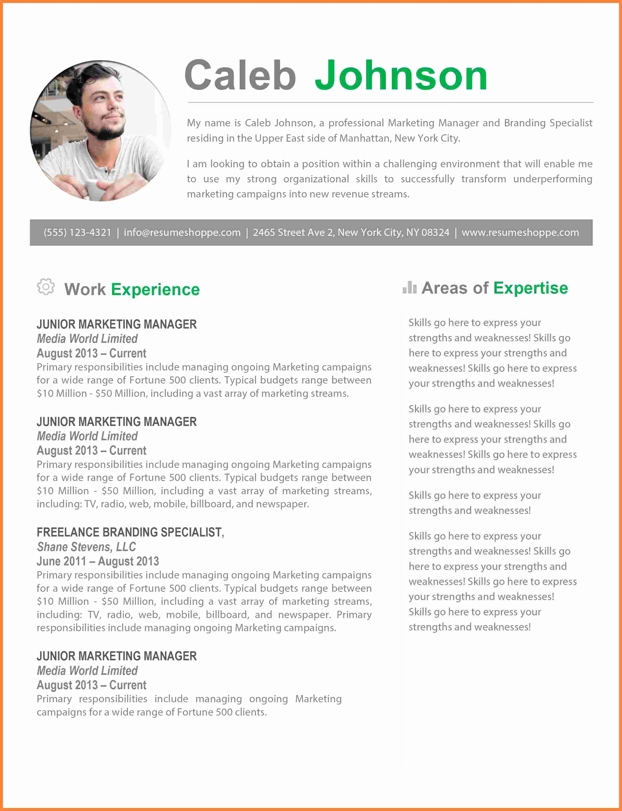 8 Resume Templates for Mac Pages Free