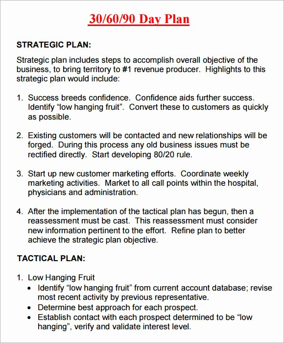 8 Sample 30 60 90 Day Plan Templates to Download