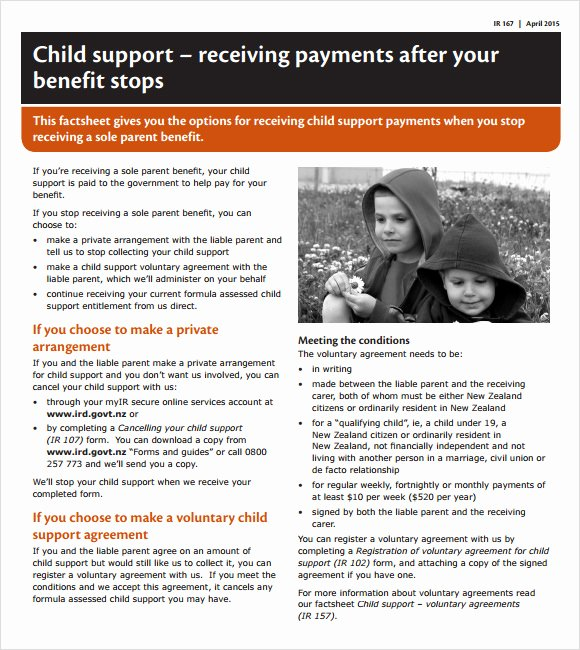 8 Sample Child Support Agreements