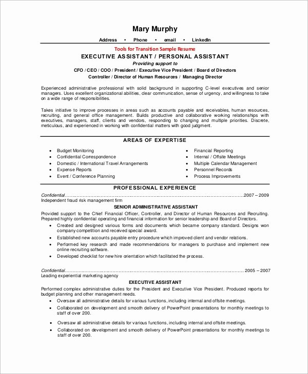 8 Sample Executive Resumes