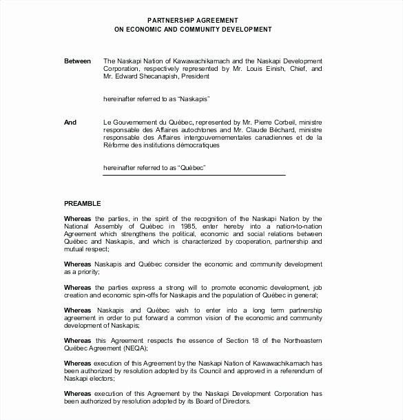80 Best Free Partnership Agreement form Pdf