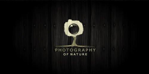80 Inspirasi Logo Fotografi Amy Syeera