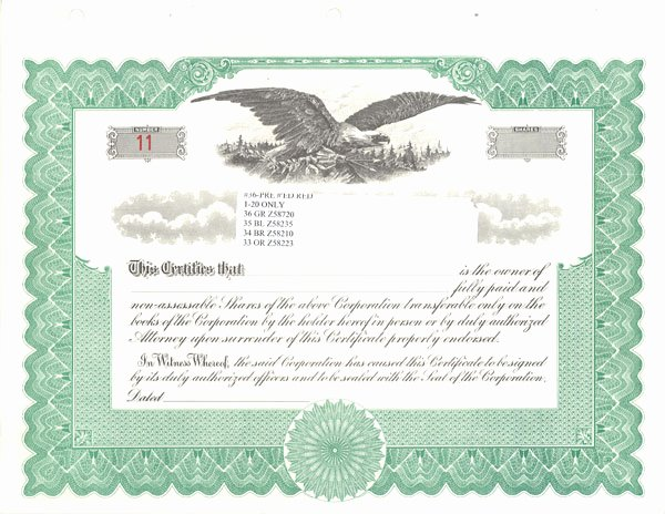 9 Best Of Free Blank Stock Certificate form Blank