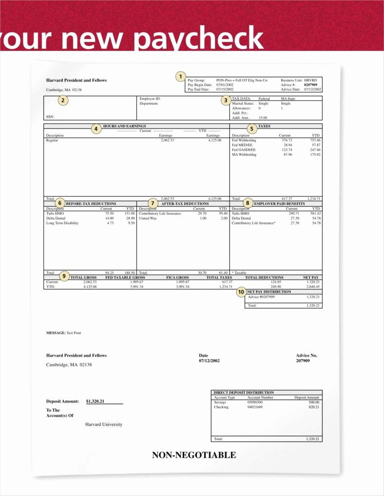 9 Blank Pay Stub Templates Free Pdf Doc format