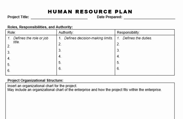 9 Hr Strategic Plan Templates Pdf