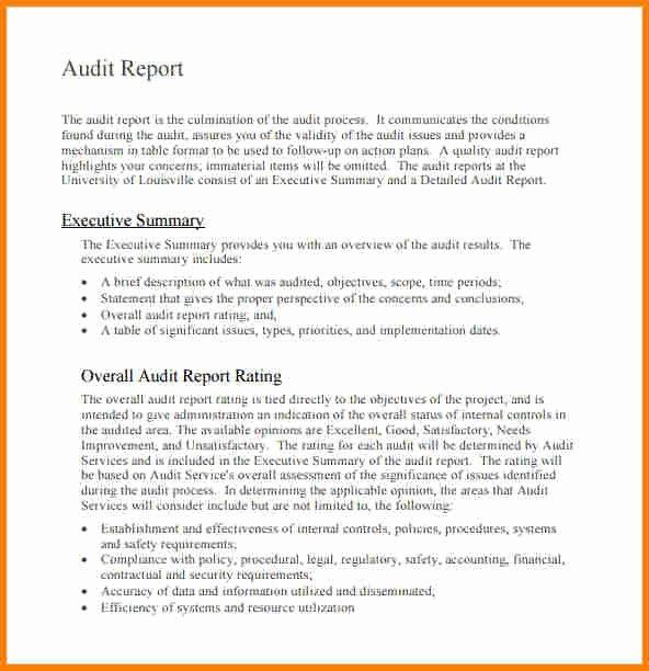 9 Internal Audit Report Sample