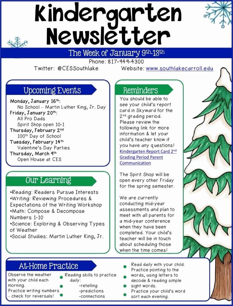 9 Kindergarten Newsletter Templates Free Samples