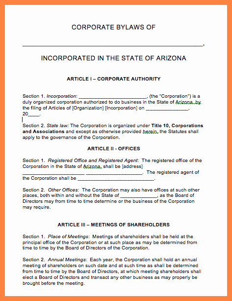 9 Pany bylaws Template
