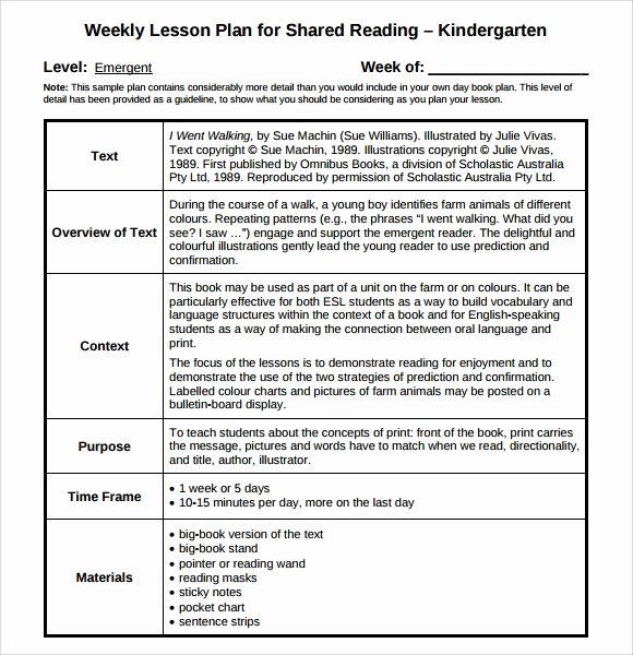 9 Sample Guided Reading Lesson Plans