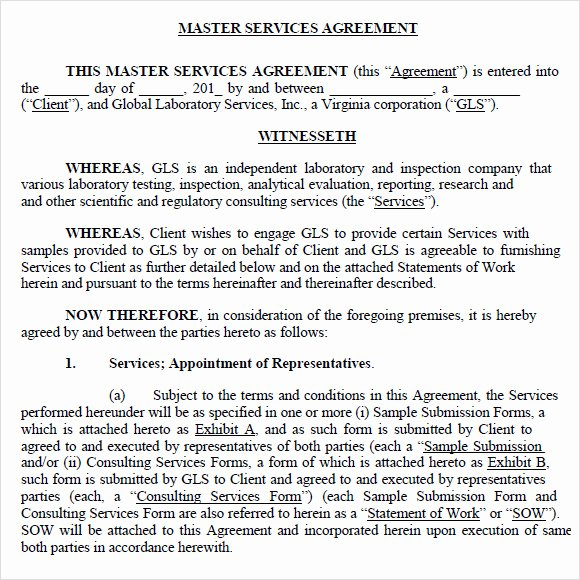 9 Sample Master Service Agreements