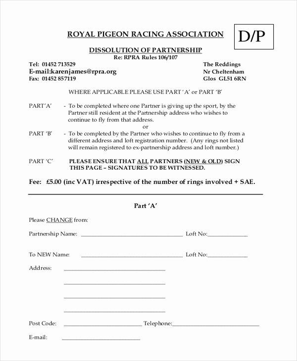 9 Sample Partnership Agreement forms Free Sample