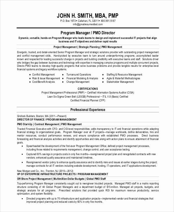 9 Sample Resume Summary Statements