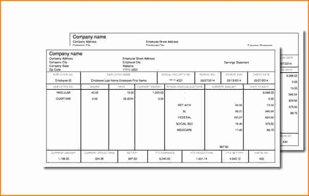 9 Truck Driver Pay Stub Template