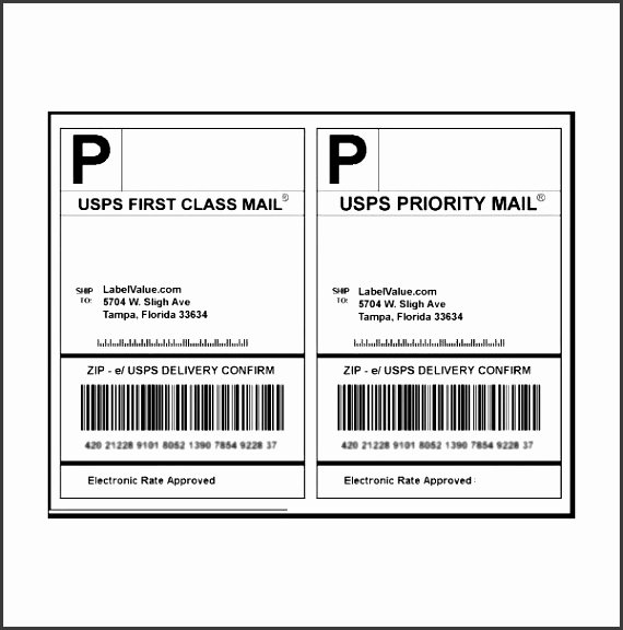 9 Usps Priority Mail Label Template Sampletemplatess