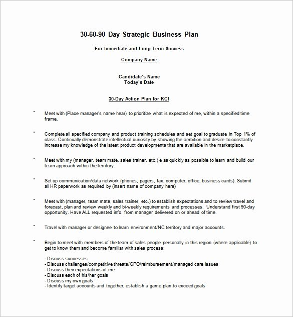 90 Day Business Plan Template Free