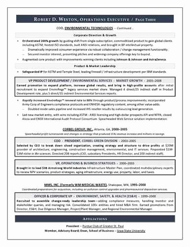 Account Best Executive Resume format