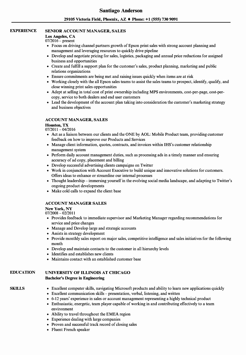 Account Manager Sales Resume Samples