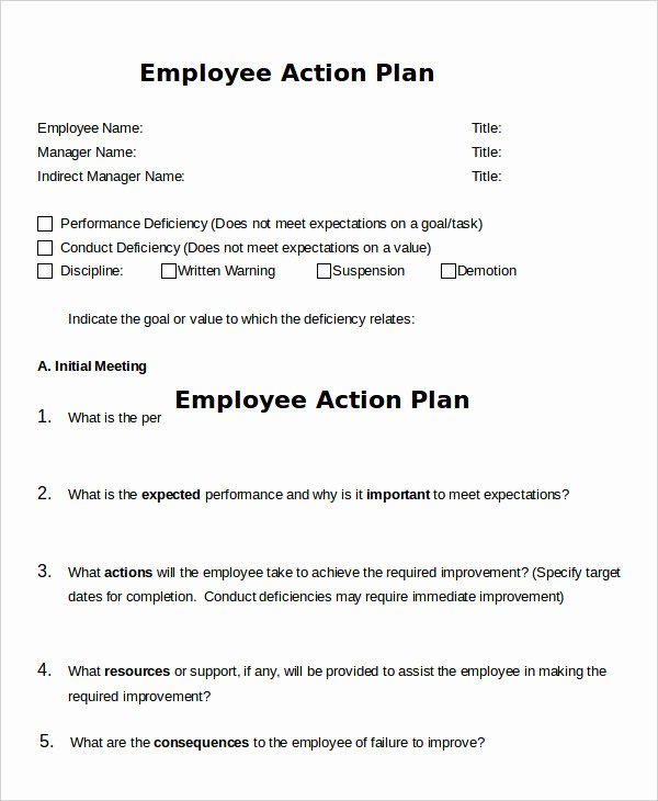 Action Plan Template 20 Free Sample Example format