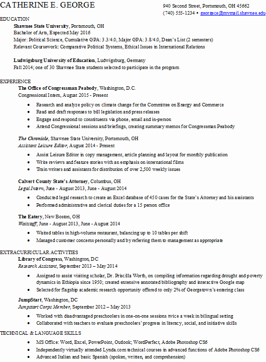 Additional Information Resume Examples Spectacular